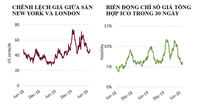 ICO: Chỉ số giá cà phê ICO trong tháng 6 giảm tháng thứ ba liên tiếp - Ảnh 3.