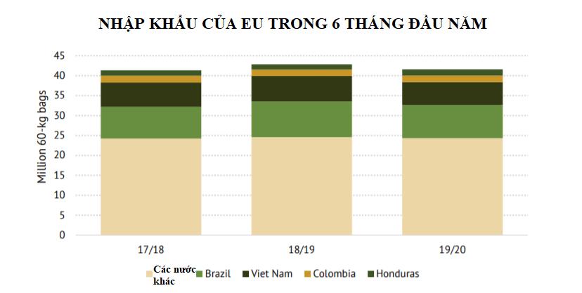 ICO: Xuất nhập khẩu cà phê trong tháng 5 giảm nhẹ - Ảnh 2.