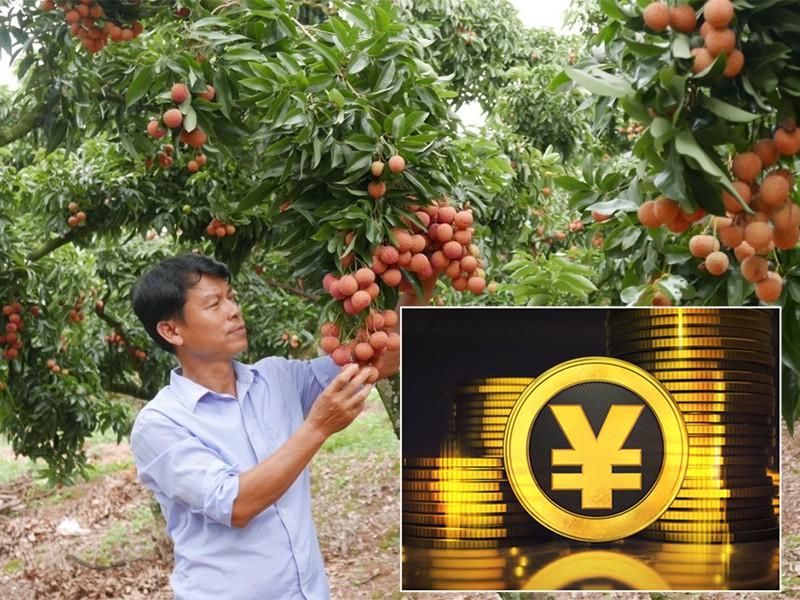 Tiền số Trung Quốc sẽ tác động đến doanh nghiệp Việt - Ảnh 1.