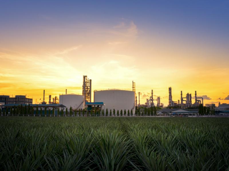 Giá gas hôm nay 8/7: Thời tiết thuận lợi, giá gas tiếp tục tăng - Ảnh 1.