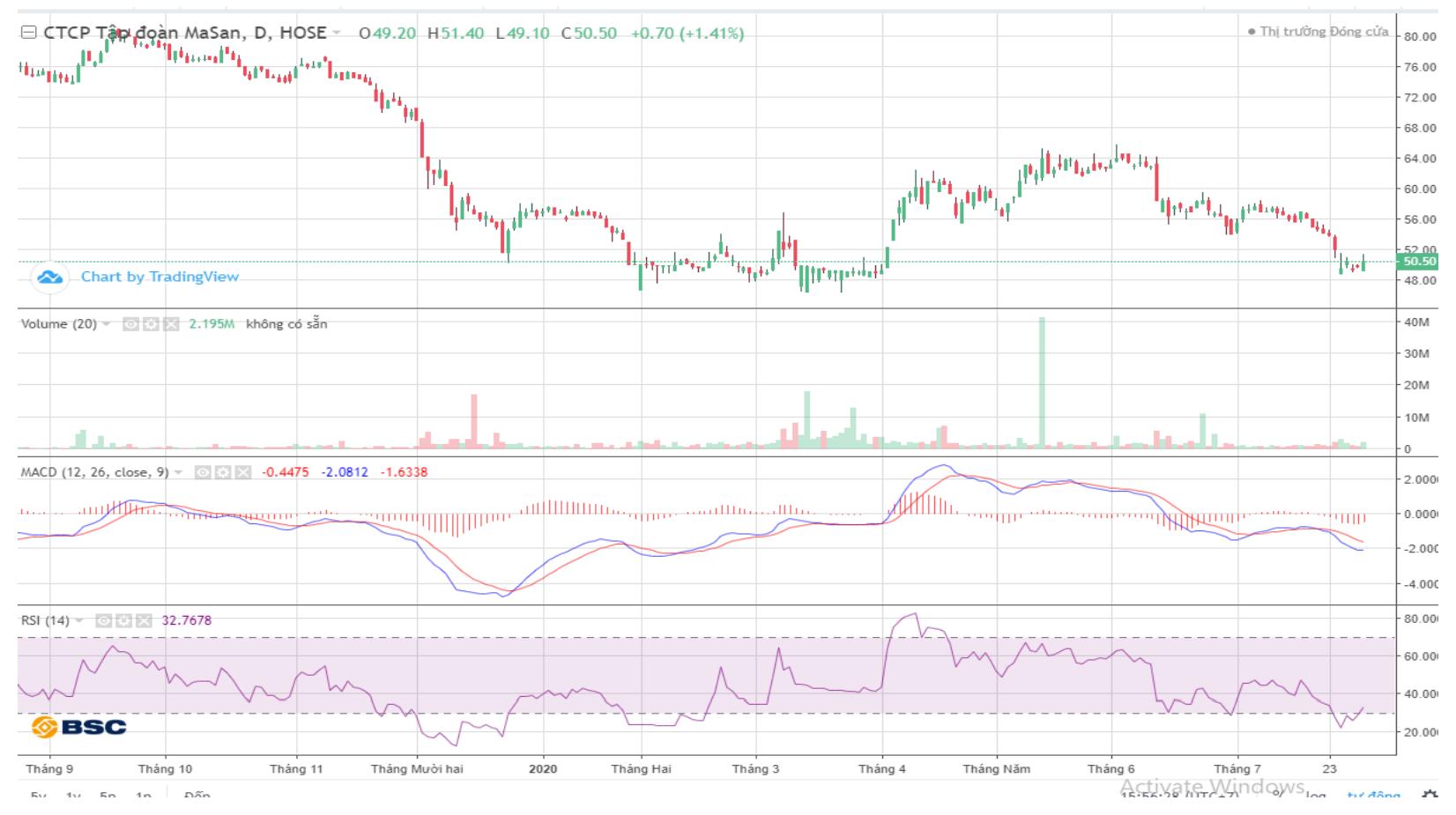 Cổ phiếu tâm điểm ngày 3/8: VIC, MSN, SNZ, HDG, TDM - Ảnh 2.