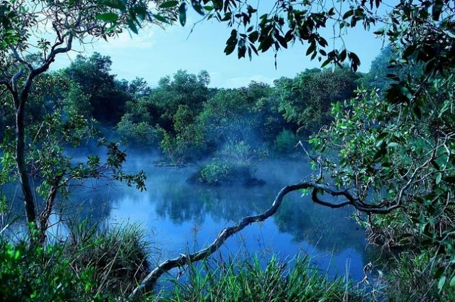 Hồ Tràm nguyên sơ và thơ mộng - Ảnh 4.