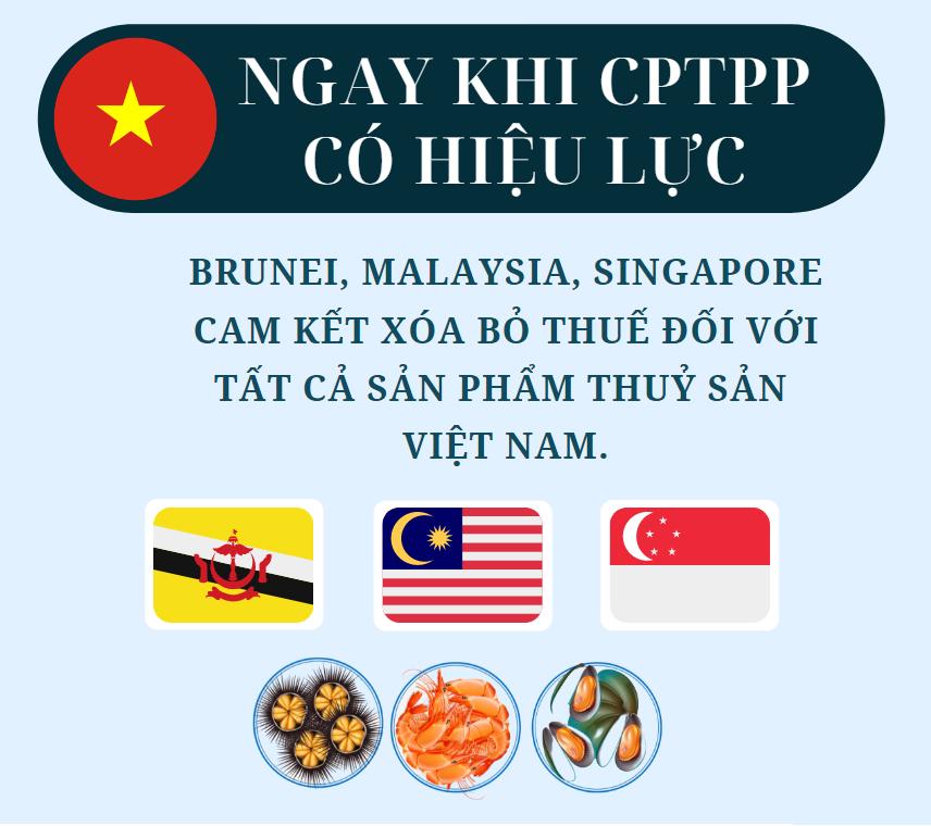 CPTPP: Cam kết thuế quan của Brunei, Malaysia, Singapore đối với thủy sản Việt Nam - Ảnh 1.