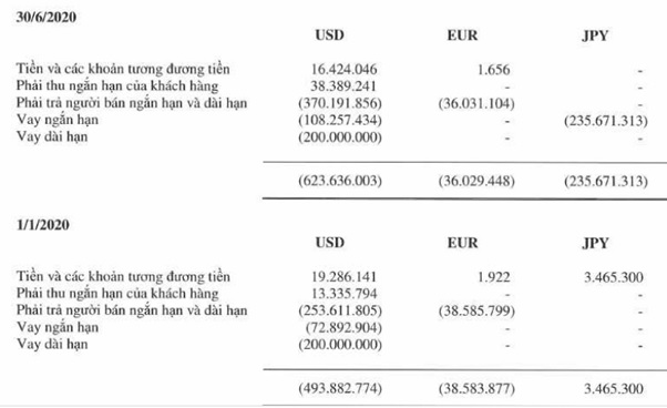 Rủi ro lãi suất của Hòa Phát gia tăng - Ảnh 4.