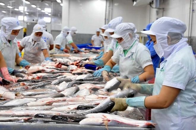 VASEP bổ sung thông tin qui trình chế biến thủy hải sản gỡ vướng cho DN bị áp thuế hàng 'chế biến' như 'sơ chế' - Ảnh 2.
