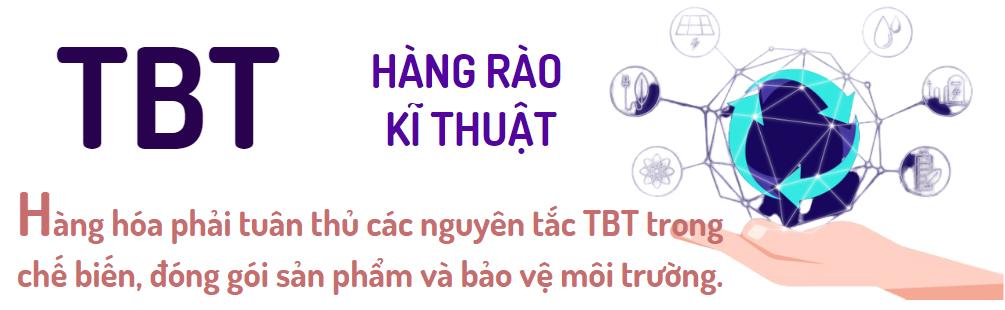 EVFTA: Cam kết về TBT, SPS - Ảnh 1.