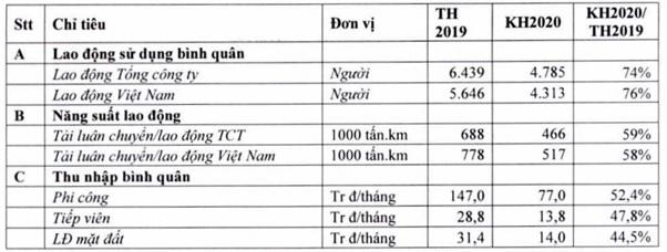 Vietnam Airlines: Từ lãnh đạo đến phi công, tiếp viên đều phải giảm nửa thu nhập - Ảnh 2.