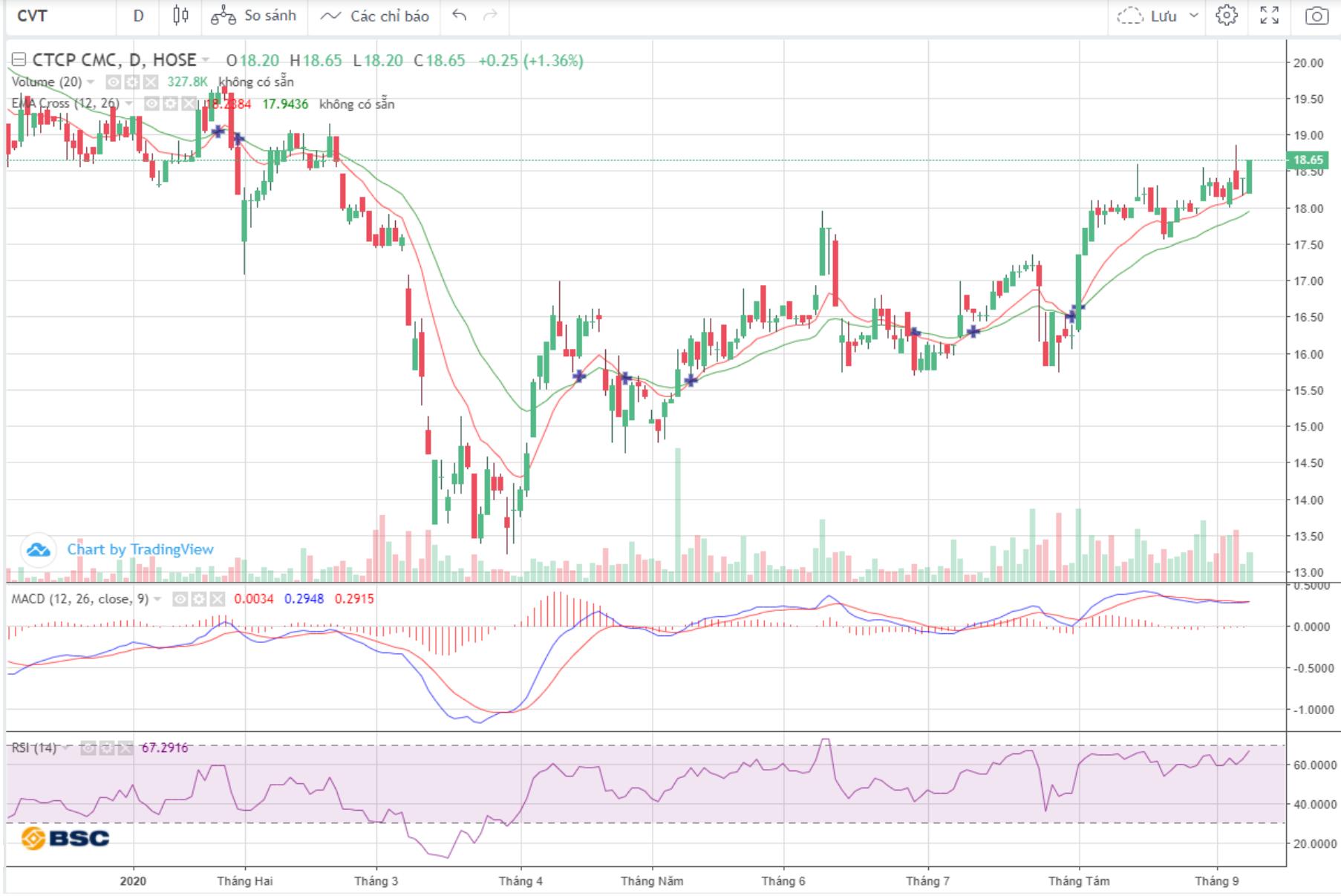 Cổ phiếu tâm điểm ngày 10/9: VIC, CVT, AGG - Ảnh 1.