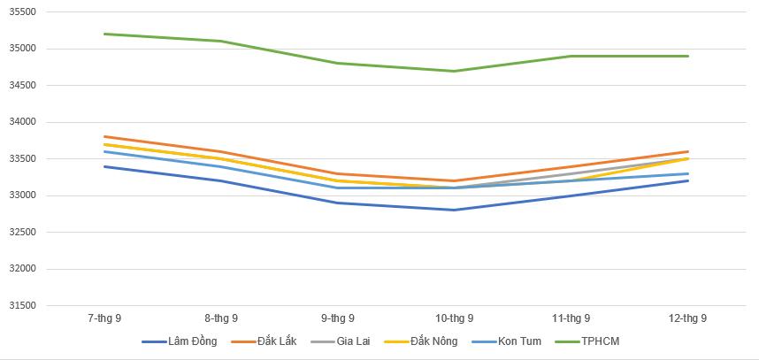 Giá cà phê hôm nay 13/9: Quay đầu giảm 200 đồng/kg trong tuần qua, giá tiêu duy trì ổn định - Ảnh 1.