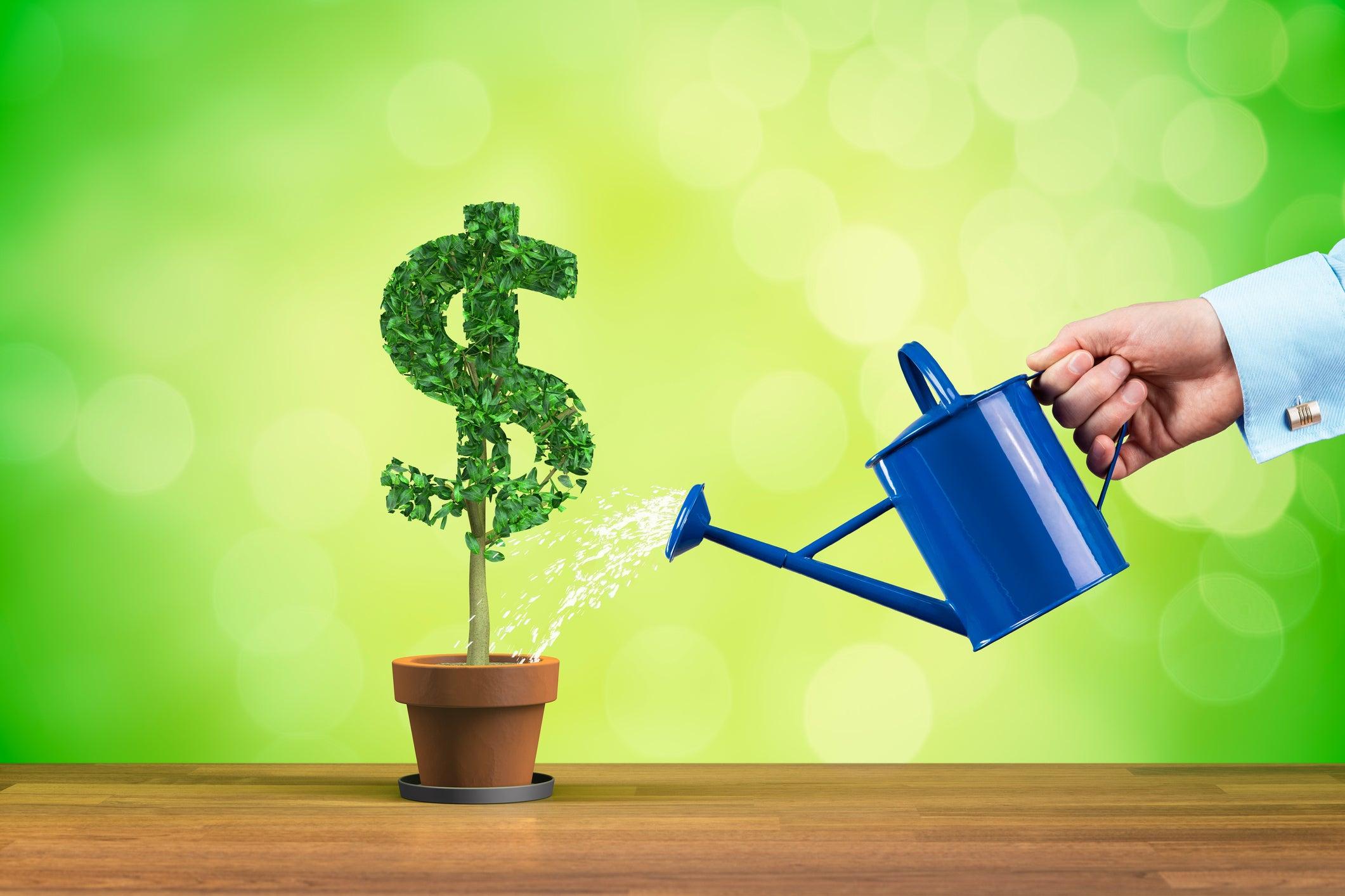 Phương pháp quản lí tài chính đảm bảo thành công cho tất cả mọi người - Ảnh 1.