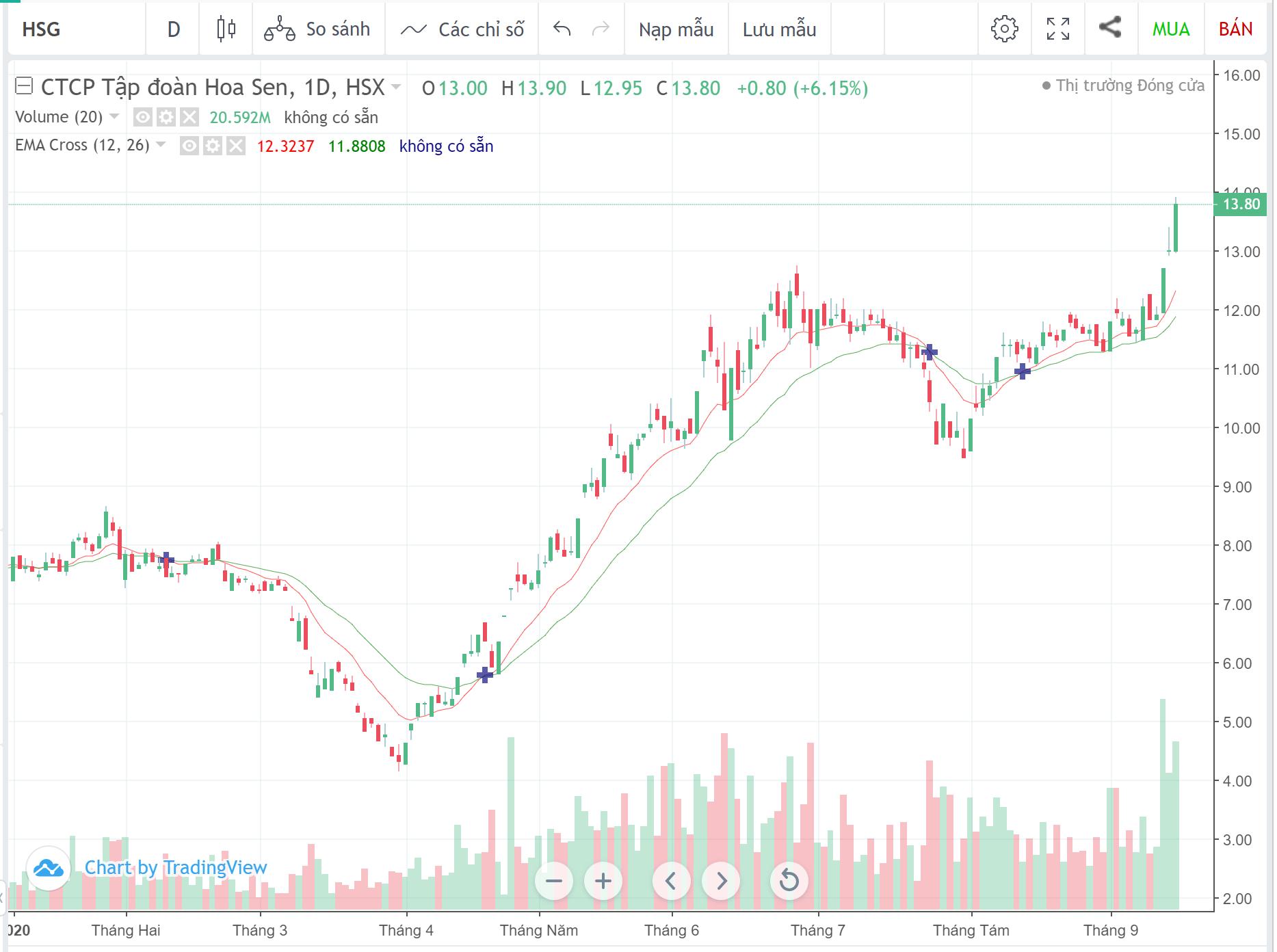 Cổ phiếu tâm điểm ngày 17/9: PVS, HSG, VHM - Ảnh 2.
