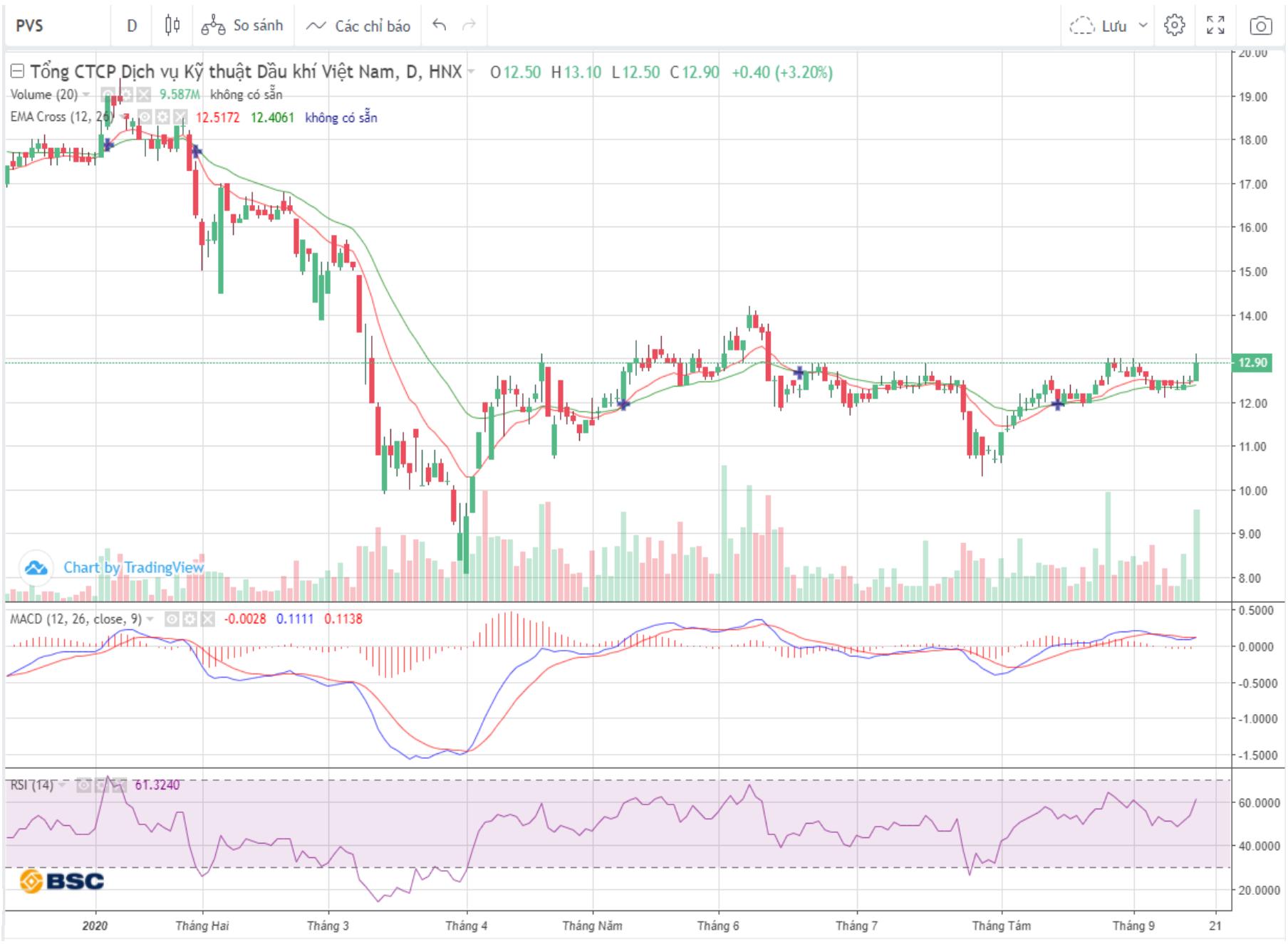 Cổ phiếu tâm điểm ngày 17/9: PVS, HSG, VHM - Ảnh 1.