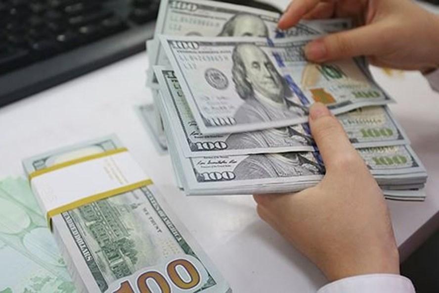 World Bank: Dự trữ ngoại tiếp tục tăng chứng tỏ khả năng phục hồi của nền kinh tế Việt Nam - Ảnh 1.