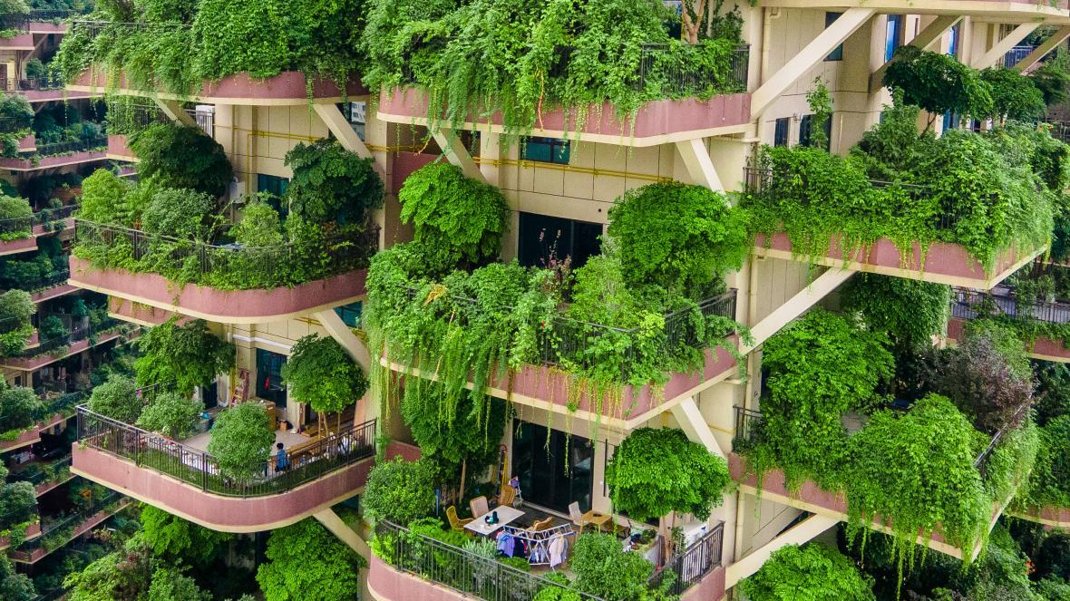Trung Quốc ra sức xây thành phố sinh thái nhưng chật vật tìm cư dân đến ở - Ảnh 3.