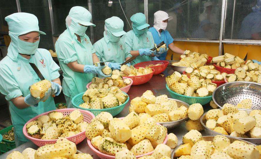 Xuất nhập khẩu Việt Nam và Anh tháng 8/2020: Xuất khẩu hàng rau quả tăng 117% - Ảnh 1.