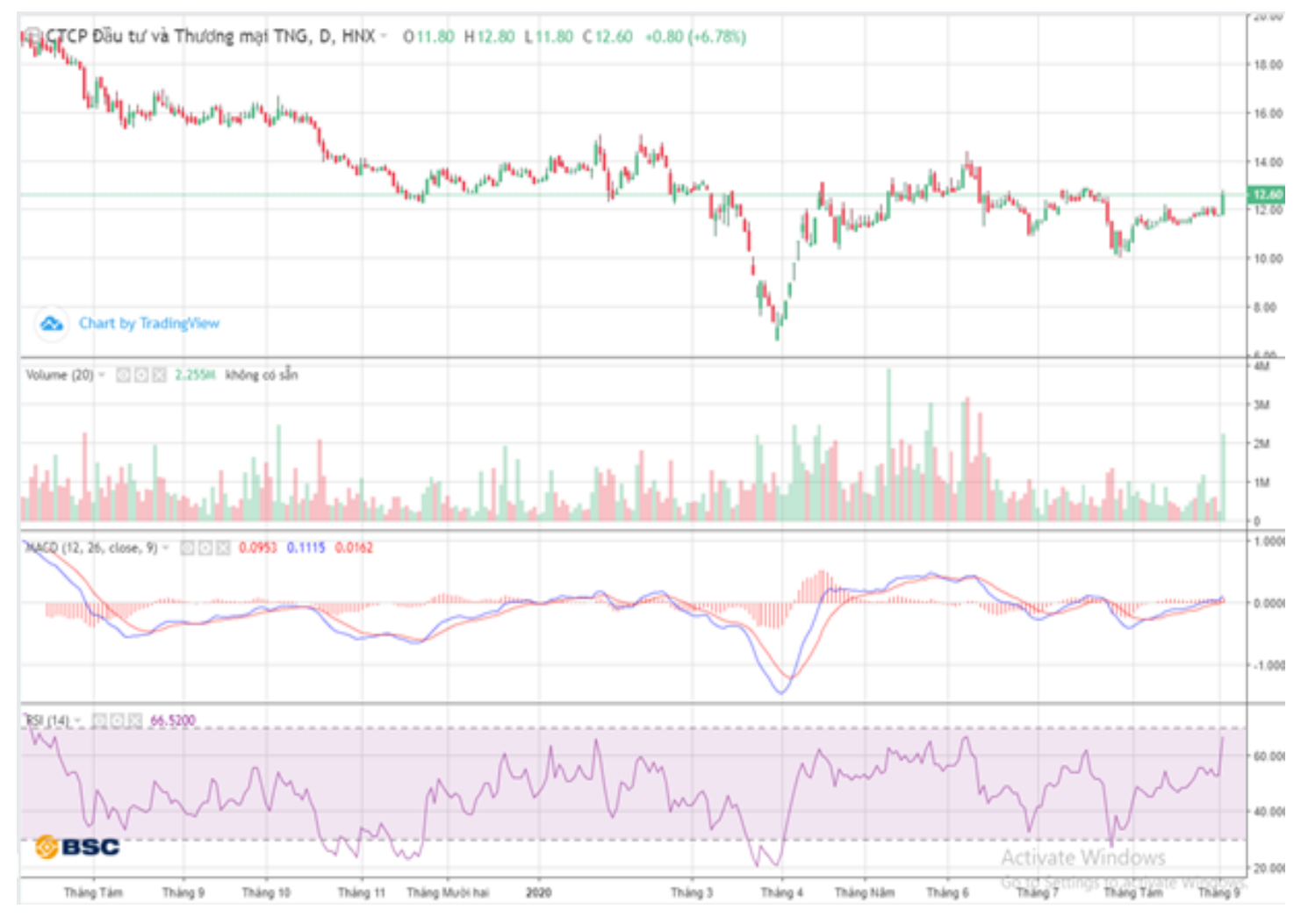 Cổ phiếu tâm điểm ngày 4/9: TNG, GEX, CII