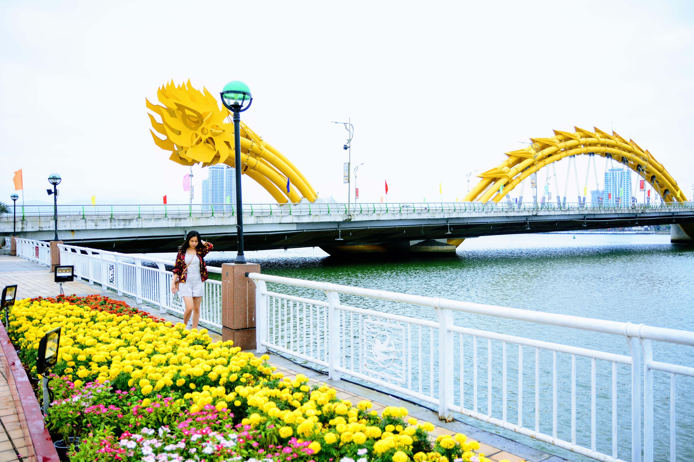 Đà Nẵng chi gần 15 tỉ đồng làm tuyến đi bộ ven sông Hàn - Ảnh 1.