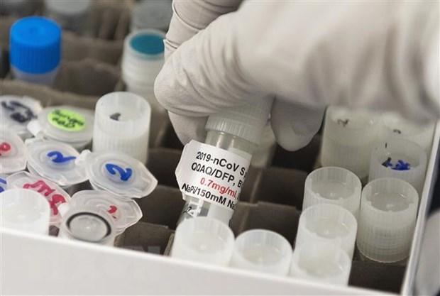 Các nước châu Âu tiếp nhận liều vắc xin đầu tiên vào cuối năm - Ảnh 1.