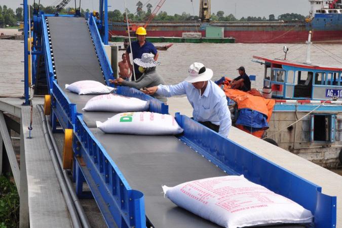 Giá gạo tiếp tục giữ vững ở mức cao trong tháng 1/2021