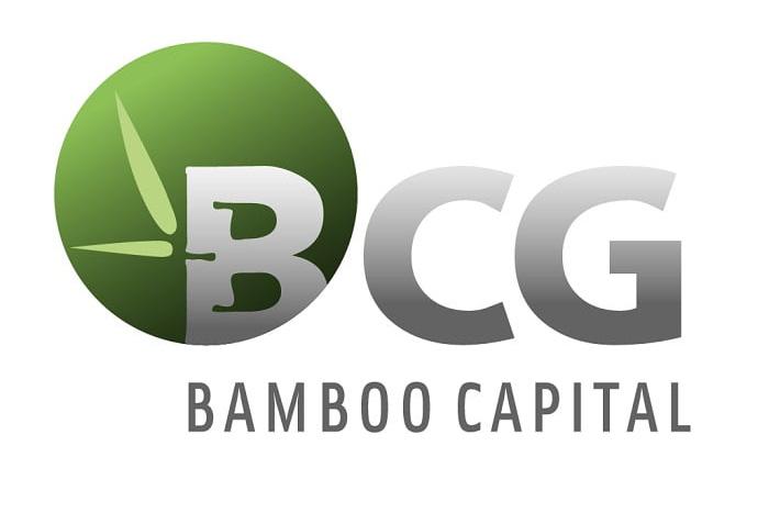Một thành viên HĐQT người Singapore xin từ nhiệm tại Bamboo Capital