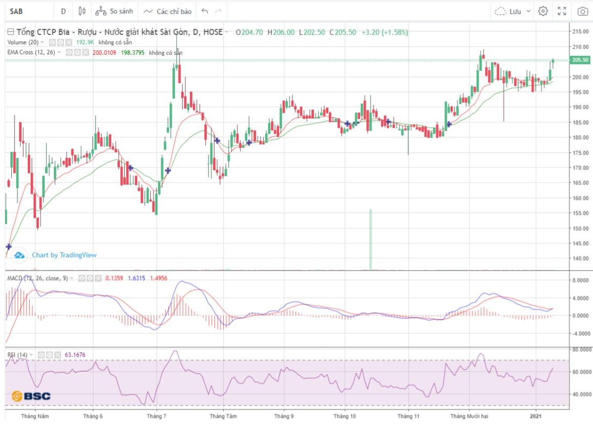 Cổ phiếu tâm điểm ngày 13/1: SAB, STK, HLD - Ảnh 1.