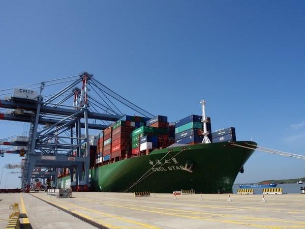 Cục trưởng Cục Hàng hải: Quy hoạch cảng biển cần đi trước một bước - Ảnh 1.