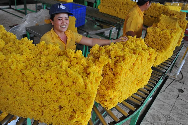 Trung Quốc đầu tư 1,5 tỷ USD nhập khẩu cao su Việt Nam