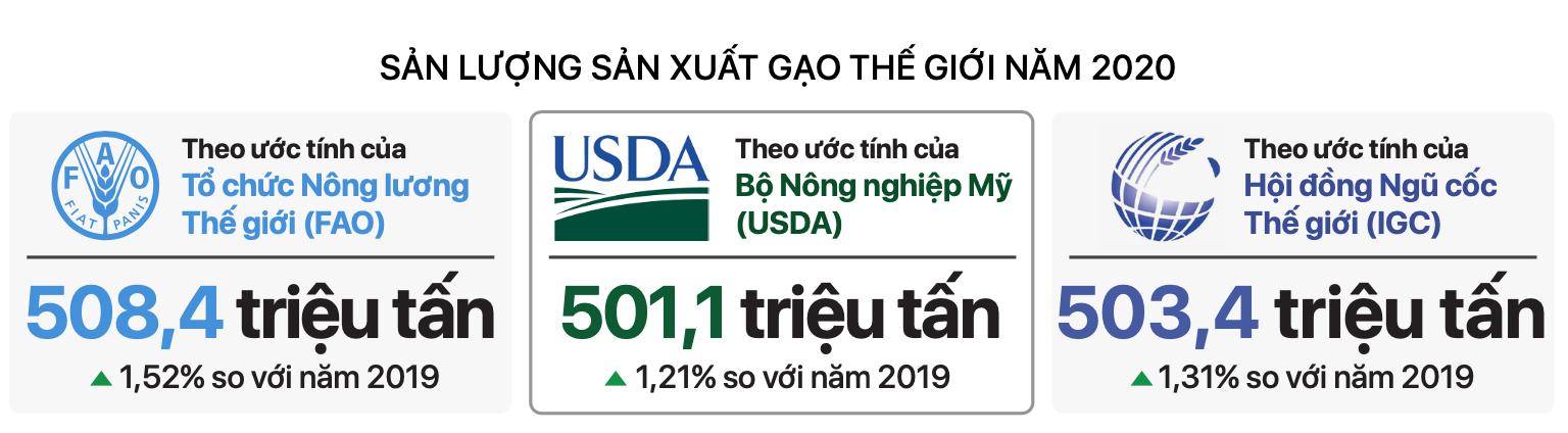 [Báo cáo] Thị trường gạo năm 2020: Giá gạo đươc kỳ vọng giữ ở mức cao trong năm tới - Ảnh 1.