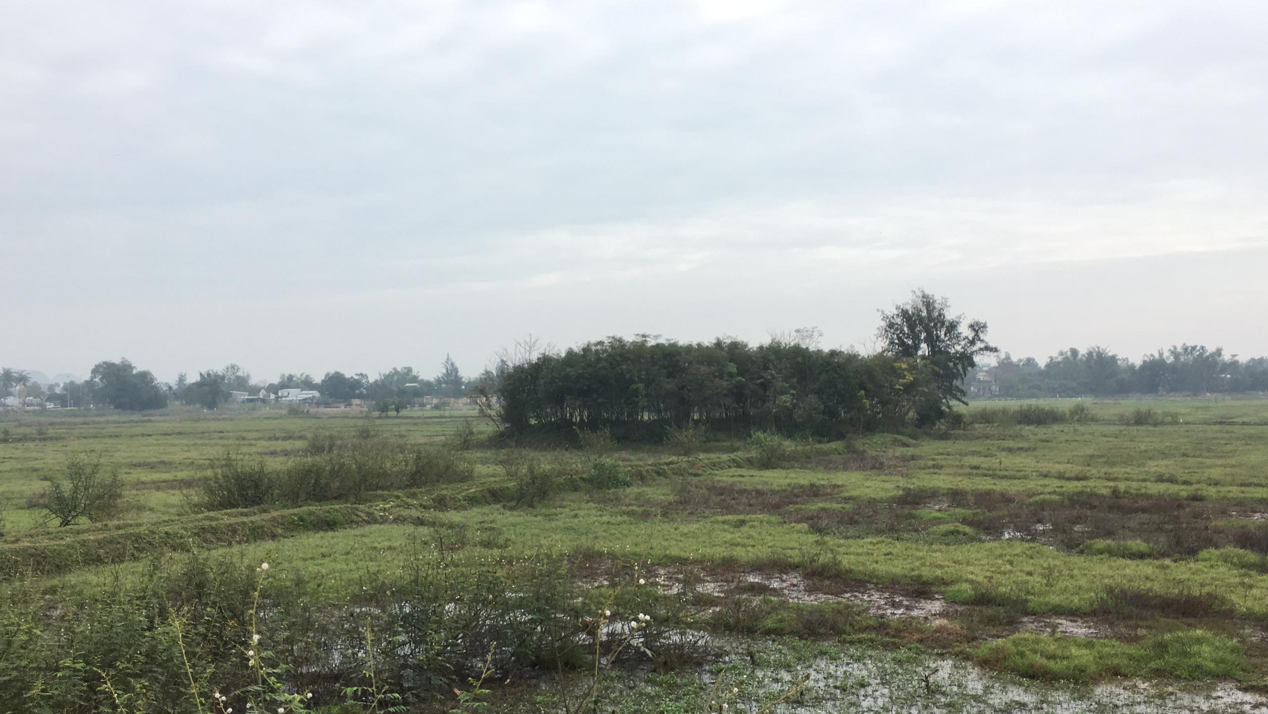 Cận cảnh khu đất ở Đà Nẵng triển khai dự án quần thể bệnh viện quốc tế gần 5.000 tỷ đồng - Ảnh 7.
