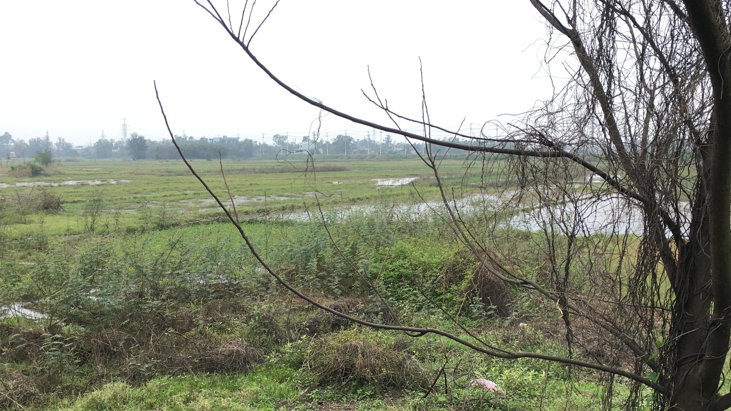 Cận cảnh khu đất ở Đà Nẵng triển khai dự án quần thể bệnh viện quốc tế gần 5.000 tỷ đồng - Ảnh 9.