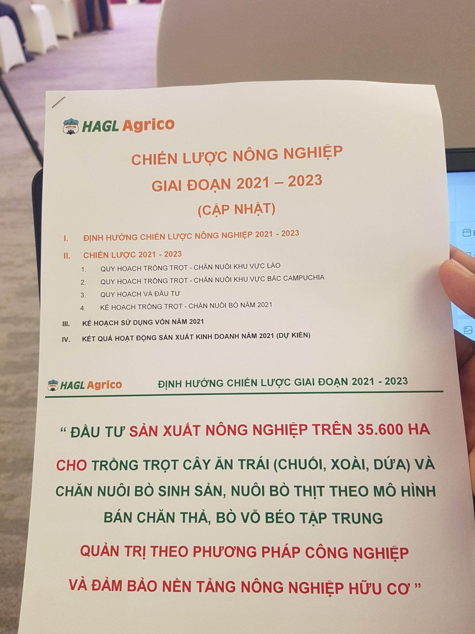 ĐHĐCĐ bất thường HAGL Agrico: Thaco nâng sở hữu lên trên 63%, HNG dự kiến có lãi quý IV đủ bù lỗ 9 tháng - Ảnh 1.