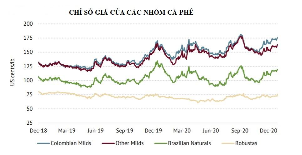 ICO: Chỉ số giá cà phê tổng hợp tháng 12 tăng 4,6% - Ảnh 2.
