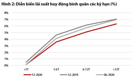 VDSC: Nhu cầu tín dụng sẽ phục hồi, dự kiến tăng 13,1% trong năm 2021 - Ảnh 2.