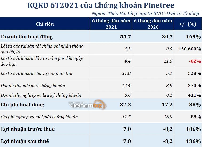 Chứng khoán Pinetree dự kiến phát hành riêng lẻ, tăng vốn lên gần 1.000 tỷ đồng - Ảnh 2.