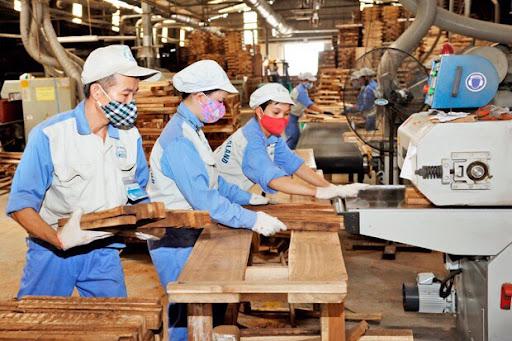 Tin Kinh tế: Doanh nghiệp loay hoay tìm lao động 'xanh' sau khi mở cửa kinh tế