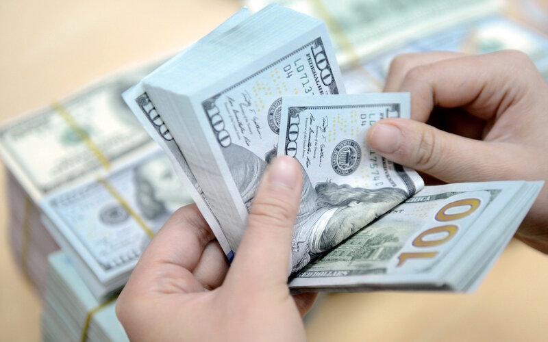 Kho bạc Nhà nước đã mua thành công 150 triệu USD - Ảnh 1.