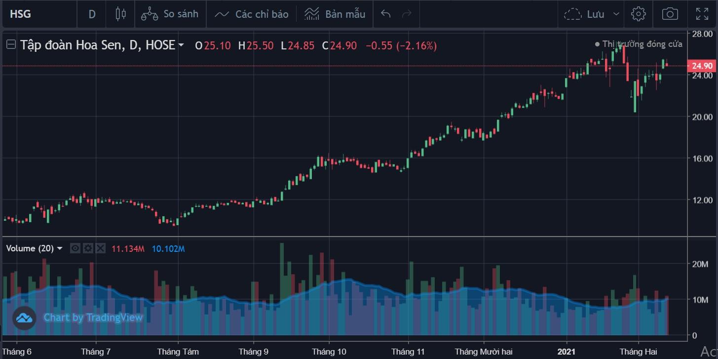 Cổ phiếu tâm điểm ngày 19/2: HSG, HDG, CTR  - Ảnh 1.