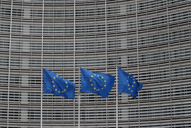 Kinh tế Eurozone giảm ít hơn dự kiến trong năm 2020 - Ảnh 1.
