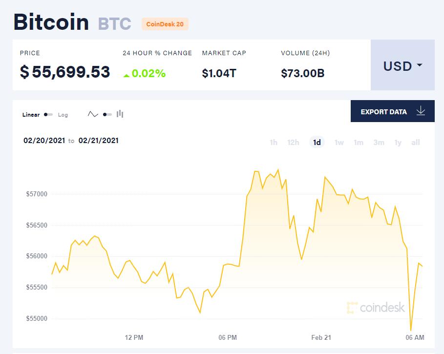 Chỉ số giá bitcoin hôm nay 21/2/21. (Nguồn: CoinDesk).
