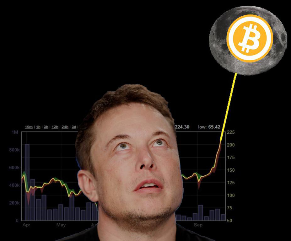 Tesla thu lợi từ Bitcoin trong một tháng tốt hơn bán xe điện cả năm - Ảnh 1.