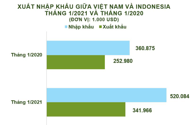 Xuất nhập khẩu Việt Nam và Indonesia tháng 1/2021: Duy trì nhập siêu - Ảnh 2.
