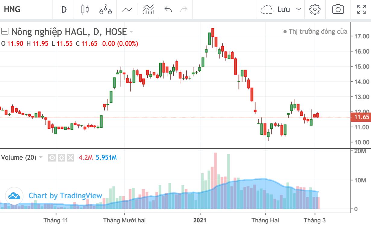 HAGL hoàn tất bán 75 triệu cổ phiếu HNG, thu về khoảng 874 tỷ đồng - Ảnh 1.