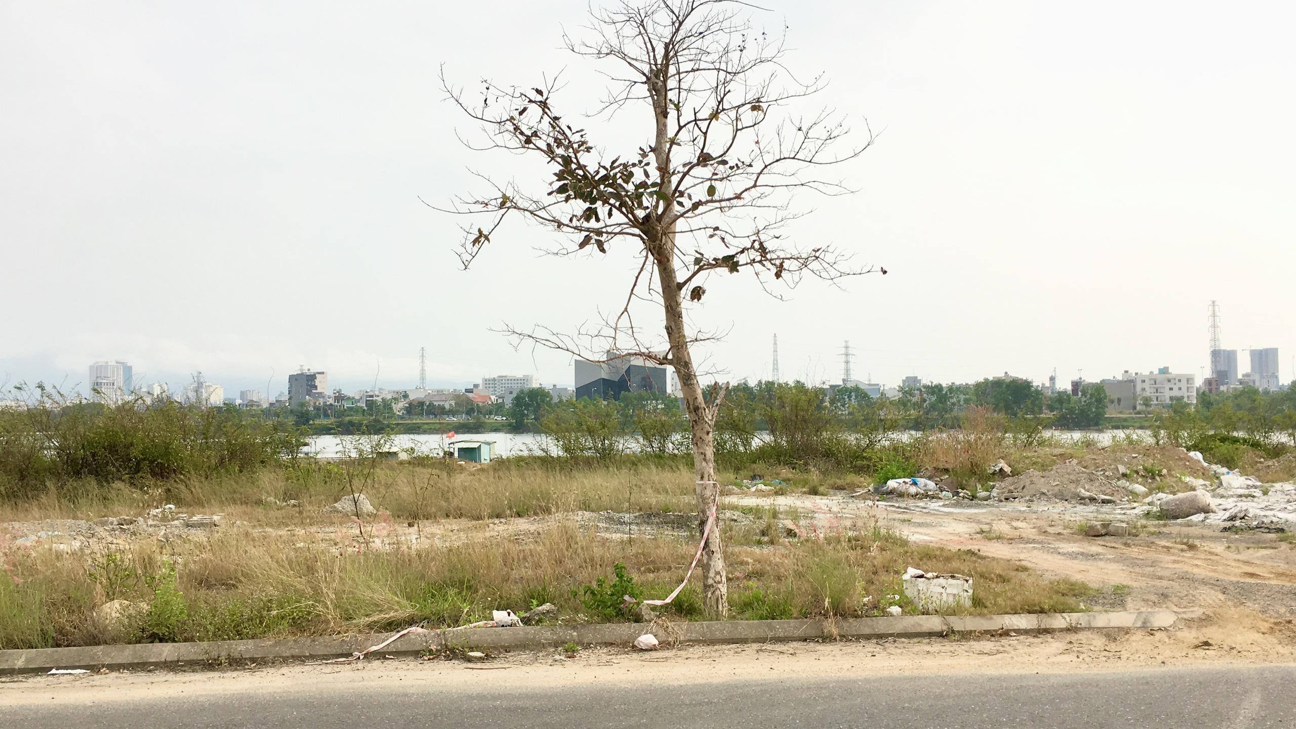 Cận cảnh nơi Đà Nẵng quy hoạch đến 2030 sẽ làm cầu từ đường Bùi Tá Hán qua Hòa Xuân - Ảnh 7.
