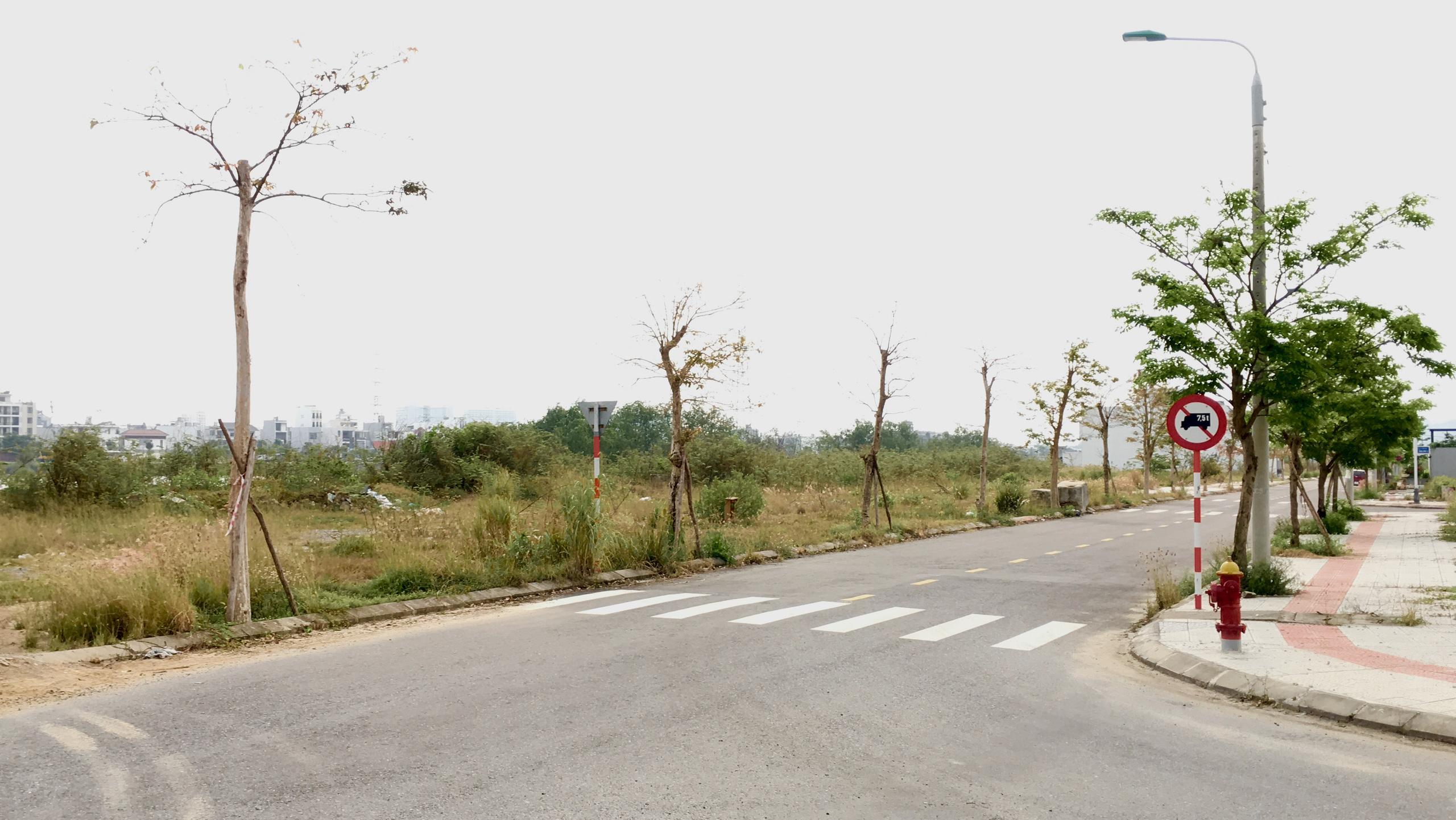 Cận cảnh nơi Đà Nẵng quy hoạch đến 2030 sẽ làm cầu từ đường Bùi Tá Hán qua Hòa Xuân - Ảnh 6.