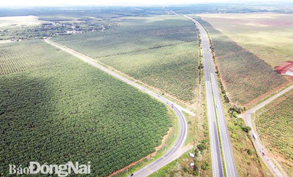 Đồng Nai bổ sung các dự án quanh sân bay Long Thành vào danh mục trọng điểm - Ảnh 1.