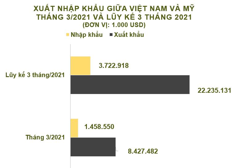 Xuất nhập khẩu Việt Nam và Mỹ tháng 3/2021: Xuất khẩu hơn 8,4 tỷ USD - Ảnh 2.