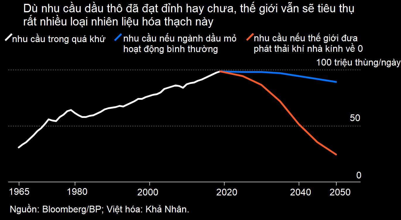 Thế giới vẫn cần hàng trăm tỷ thùng dầu thô đến năm 2050 - Ảnh 1.