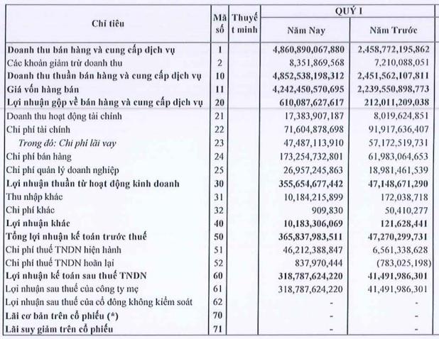 Nam Kim báo doanh thu gấp đôi, lợi nhuận gấp gần 8 lần cùng kỳ - Ảnh 2.