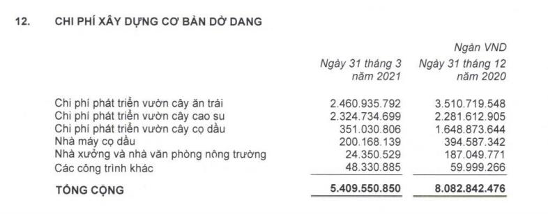 Những chuyển biến mới của HAGL Agrico sau khi Thaco nắm quyền - Ảnh 2.
