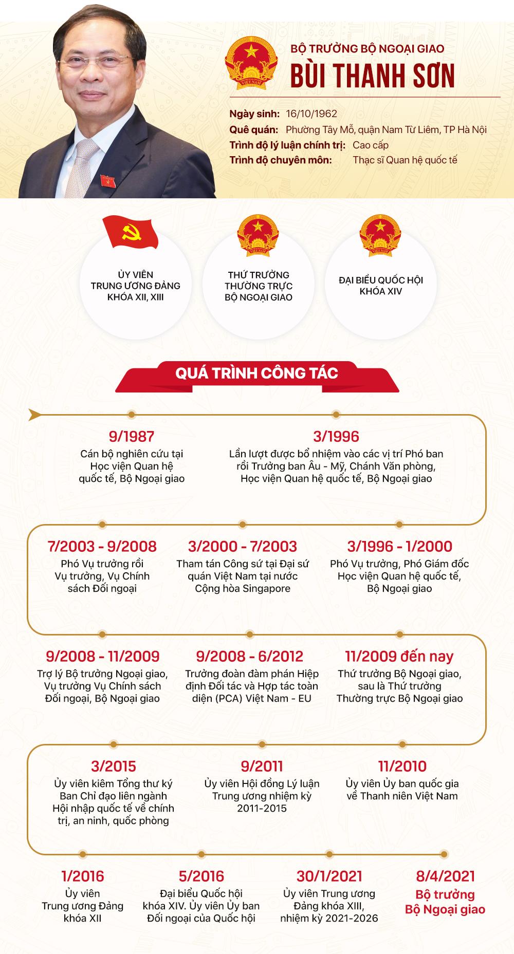 Tiểu sử tân Bộ trưởng Ngoại giao Bùi Thanh Sơn - Ảnh 1.